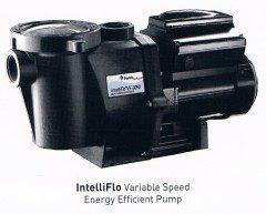 Onga IntelliFlo Pump
